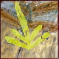 Theme & Variation: Blue Star Fern #5