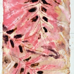 Theme & Variation: Pink & Brown Pink 3