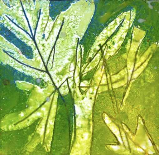 "Green Leaf Study, encaustic, pigment stick, graphite on paper, 8"" x 8"", 201699.16"